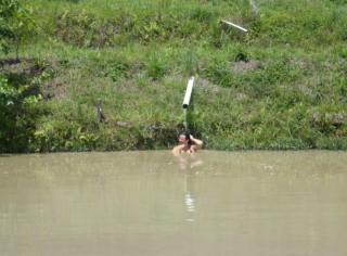 Itapira: Lindo sítio rico em água direto com o proprietário 6