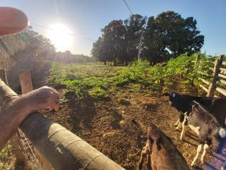 Aragoiânia: Cahacara para morar e fazer renda 6