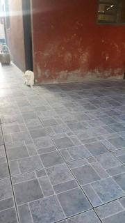 São José dos Campos: Vende-se essa casa no Jardim Santa Luzia 3